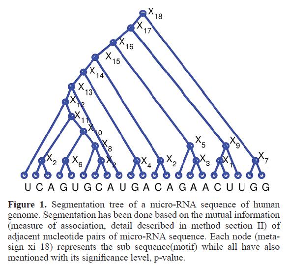 rnai-gene-silencing-micro-RNA-sequence