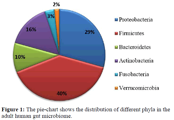rnai-gene-silencing-pie-chart