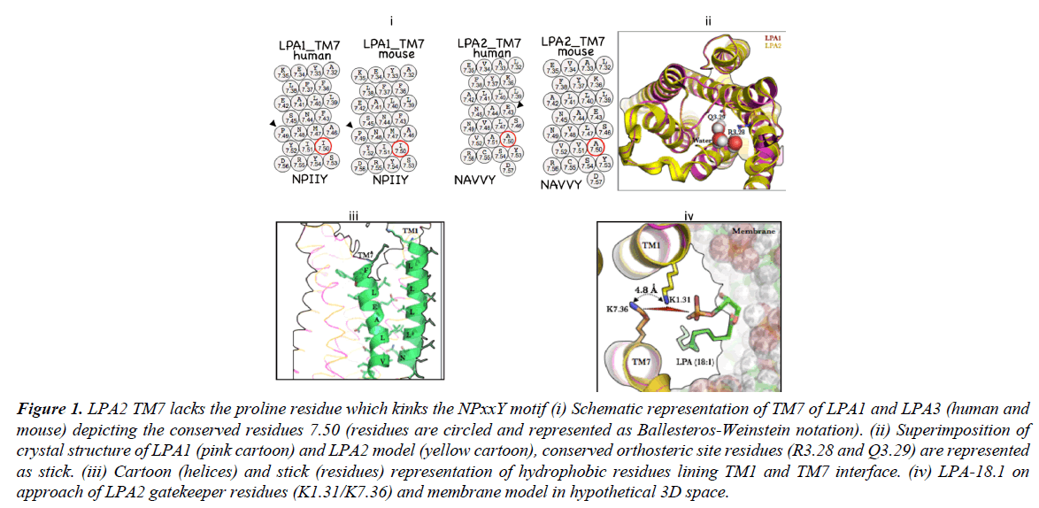 systems-biology-proteome-research-Schematic-representation
