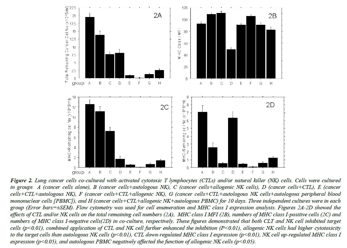 translational-research-cytotoxic-T-lymphocytes