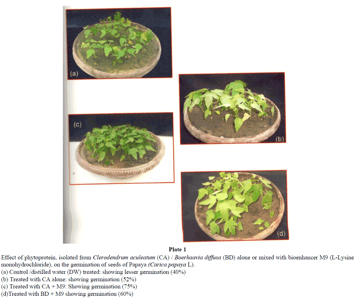 virology-research-phytoprotein