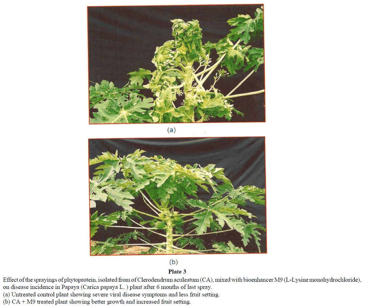 virology-research-sprayings-phytoprotein