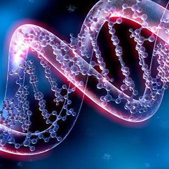 Genetics & Molecular Biology